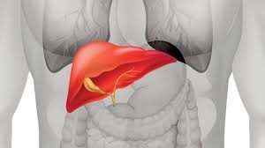 Healthy Liver दुष्प्रभाव, मतभेद