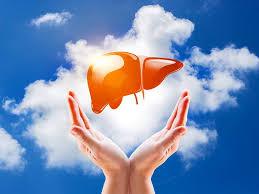 Healthy Liver - फार्मेसी में, मूल, भारत