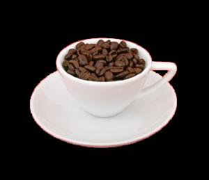 Cappuccino Fit - जहां खरीदने के लिए, प्राइस इन इंडिया, फार्मेसी, amazon