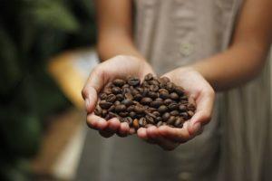 Cappuccino Fit - सामग्री, के फायदे, रचना