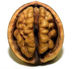 Cognitivix - मूल, भारत, फार्मेसी में