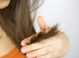 Jatayu Hair Oil - के फायदे, रचना, सामग्री