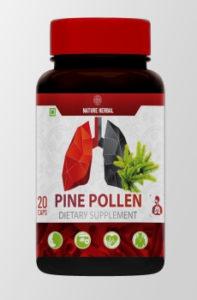 Pine Pollen - समीक्षा, राय, प्राइस इन इंडिया, मंच